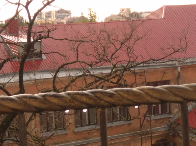 Odesa_hotel_lietus
